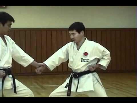 Self Breaking Martial Arts DVDs Bag Japanese Defense Technique Kata