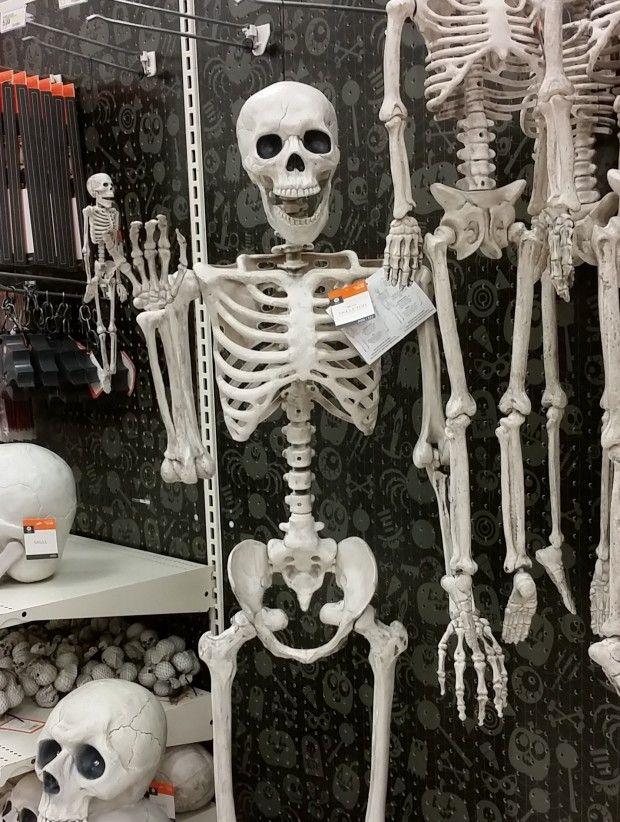 This store has very friendly skeletons :) #HalloweenIsComing