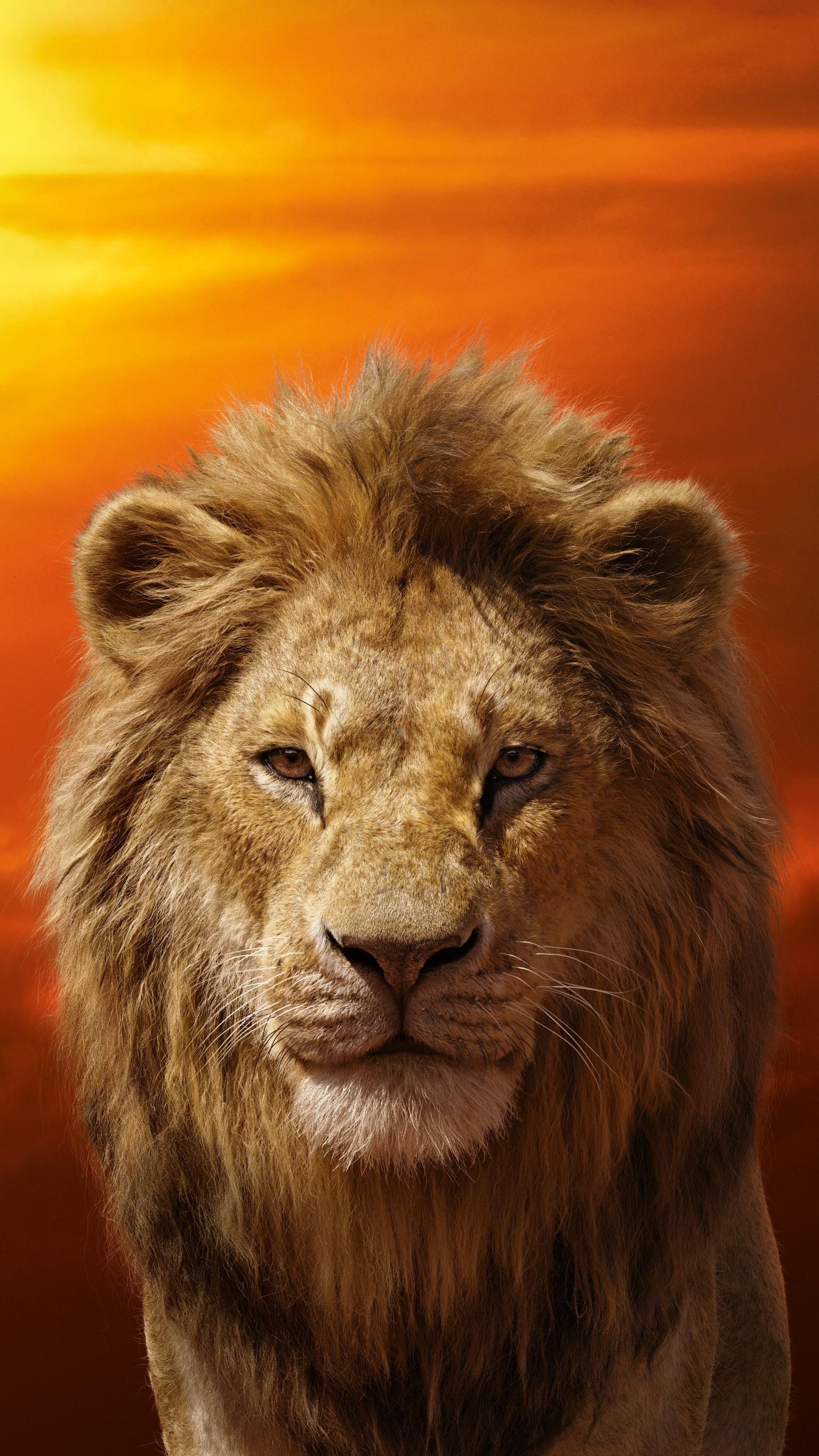 The Lion King 2019 Phone Wallpaper Singa Wallpaper