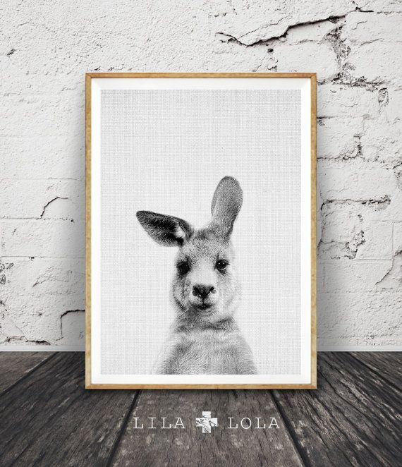 Kangaroo Print Australian Animal Wall Art Kids Room Poster Printable Nursery Black And