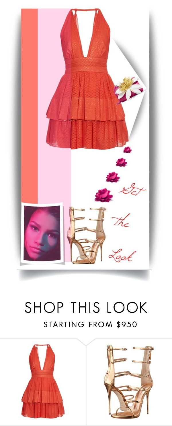 """""""Get the Look: Met Gala 2016"""" by dianefantasy ❤ liked on Polyvore featuring Sophie Theallet, Giuseppe Zanotti, Nancy Gonzalez, GetTheLook, MetGala and polyvoreeditorial"""