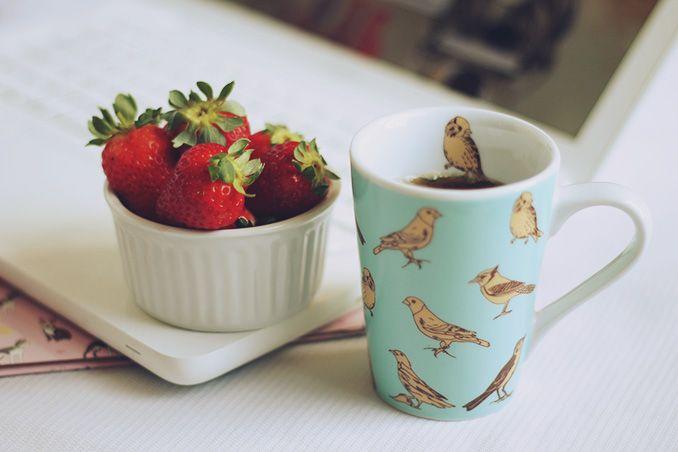 Birds cup (por Não Provoque)