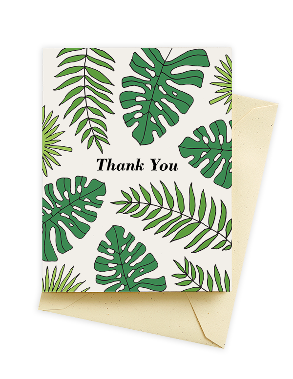Seltzer goods fronds thank you cards plant lady pinterest plants seltzer goods fronds thank you cards m4hsunfo