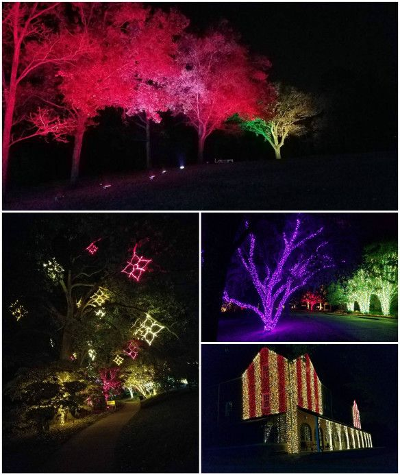 Nashville holiday outdoor lighting at cheekwood gardens holiday landscape residential commercial lighting for over 20 years aloadofball Choice Image