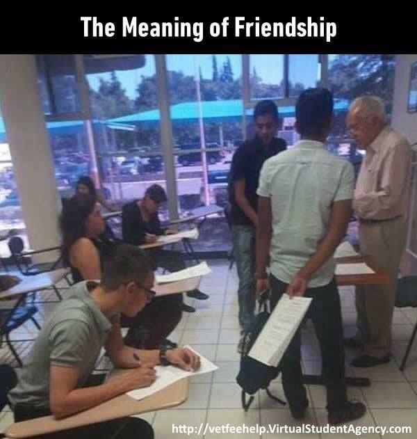 Do You Have Real Friends What Did You Virtual Student Agency Funny Pictures Laugh Funny Quotes