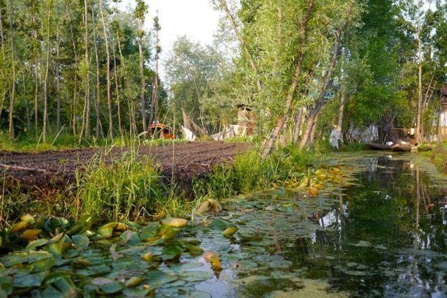 Image Result For Floating Gardens Kashmir Growing 400 x 300