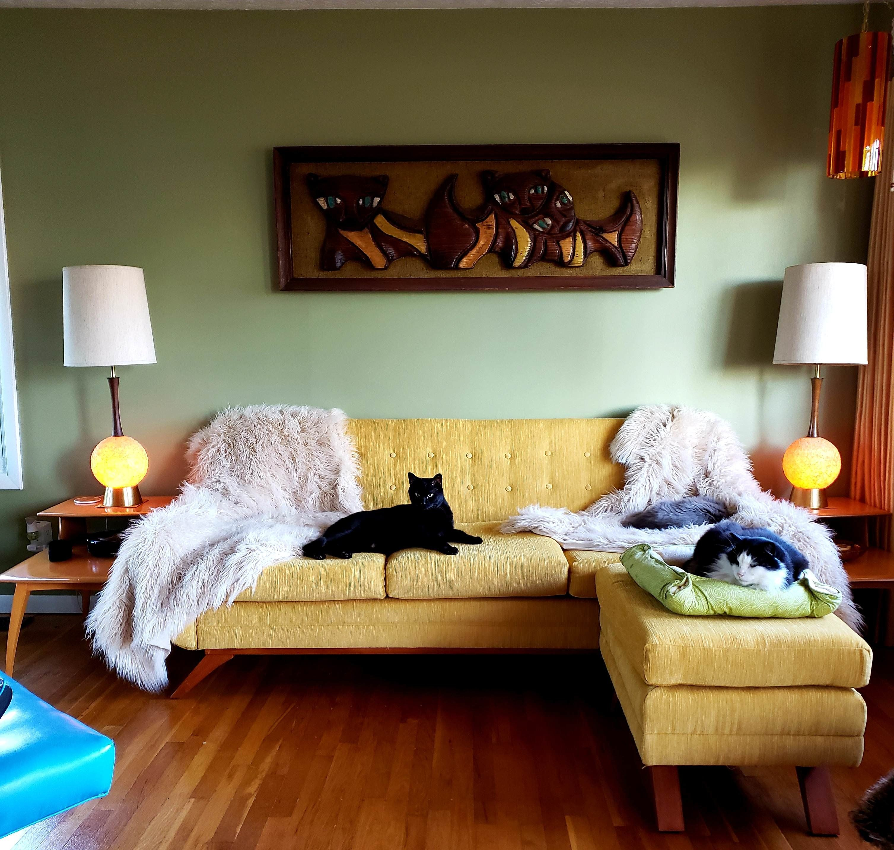My Living Room In Our Mid Century Modest 1950s Ranch In Columbus Ohio Amateurroomporn Retro Living Rooms Living Room Inspo 1950s Living Room