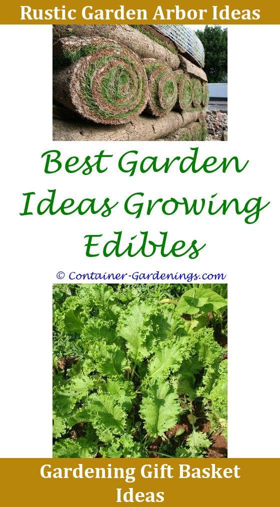 Gargen Night Garden Cake Ideas Concrete Garden Path Ideas Garden ...