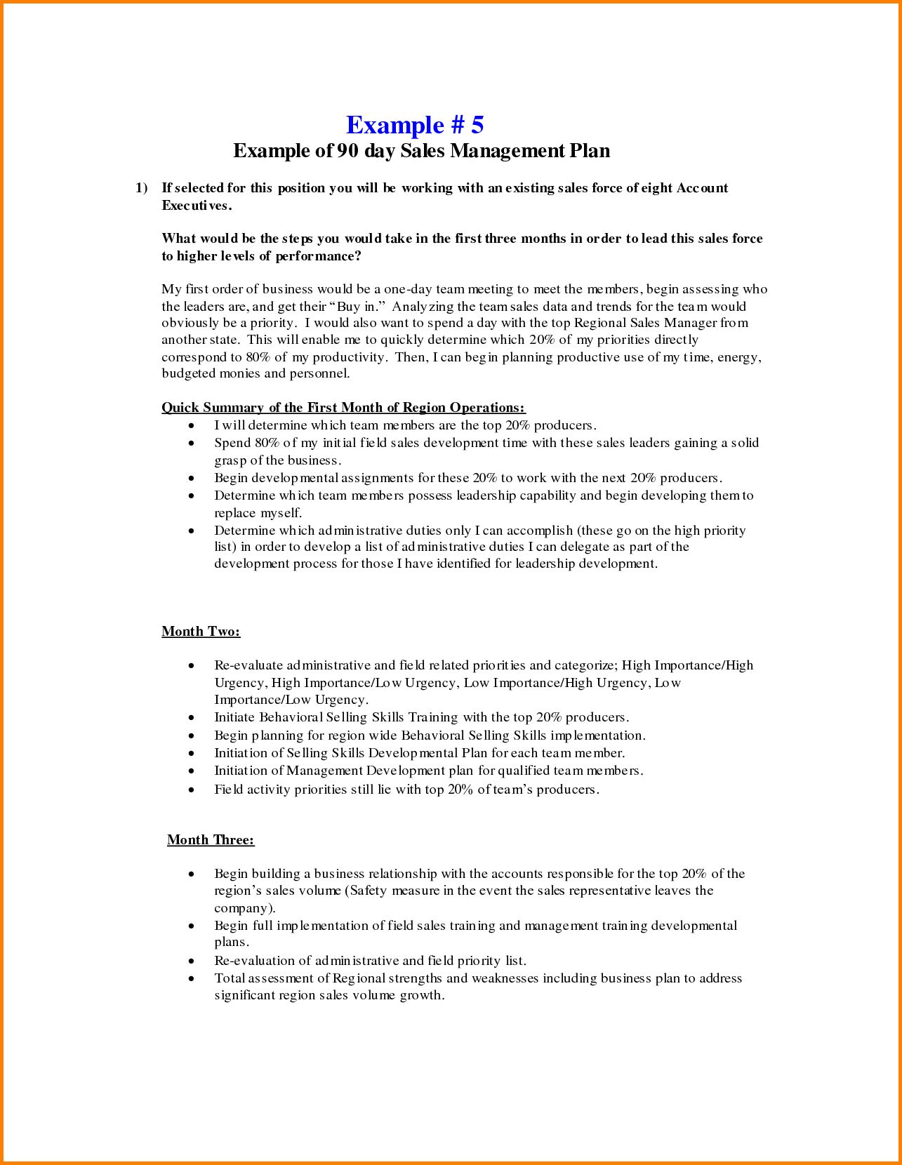 Business Plans Day Sales Management Plan Template Free For