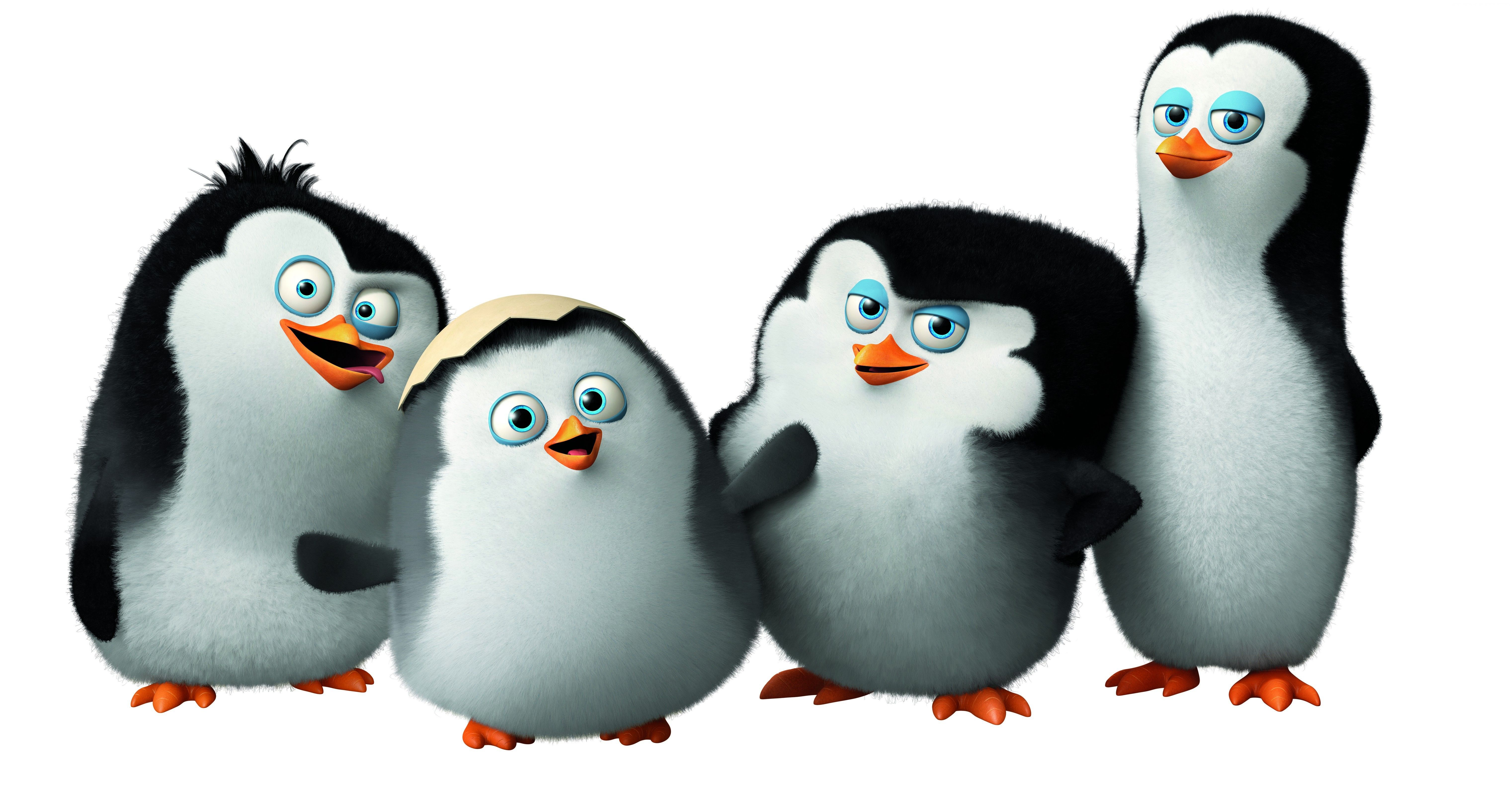 Awesome Cute Penguins Cartoon Madagascar 6k Wallpaper
