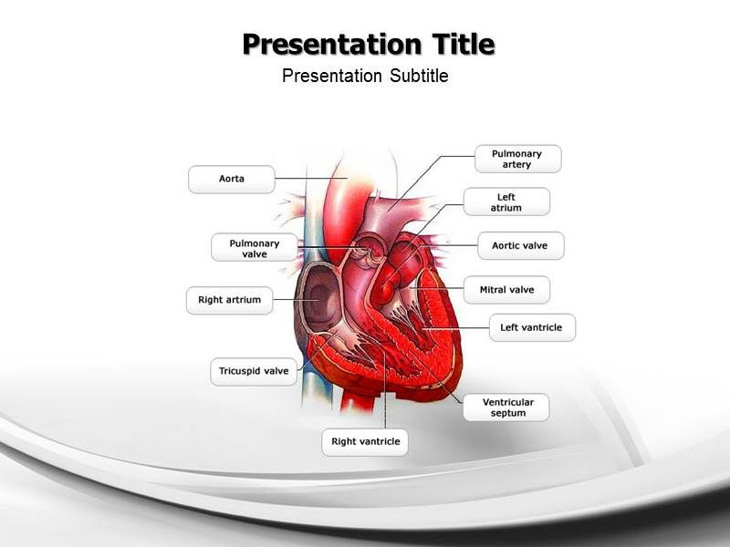 Congestive Heart Failure Congestive Heart Failure PowerPoint(PPT - nursing powerpoint template