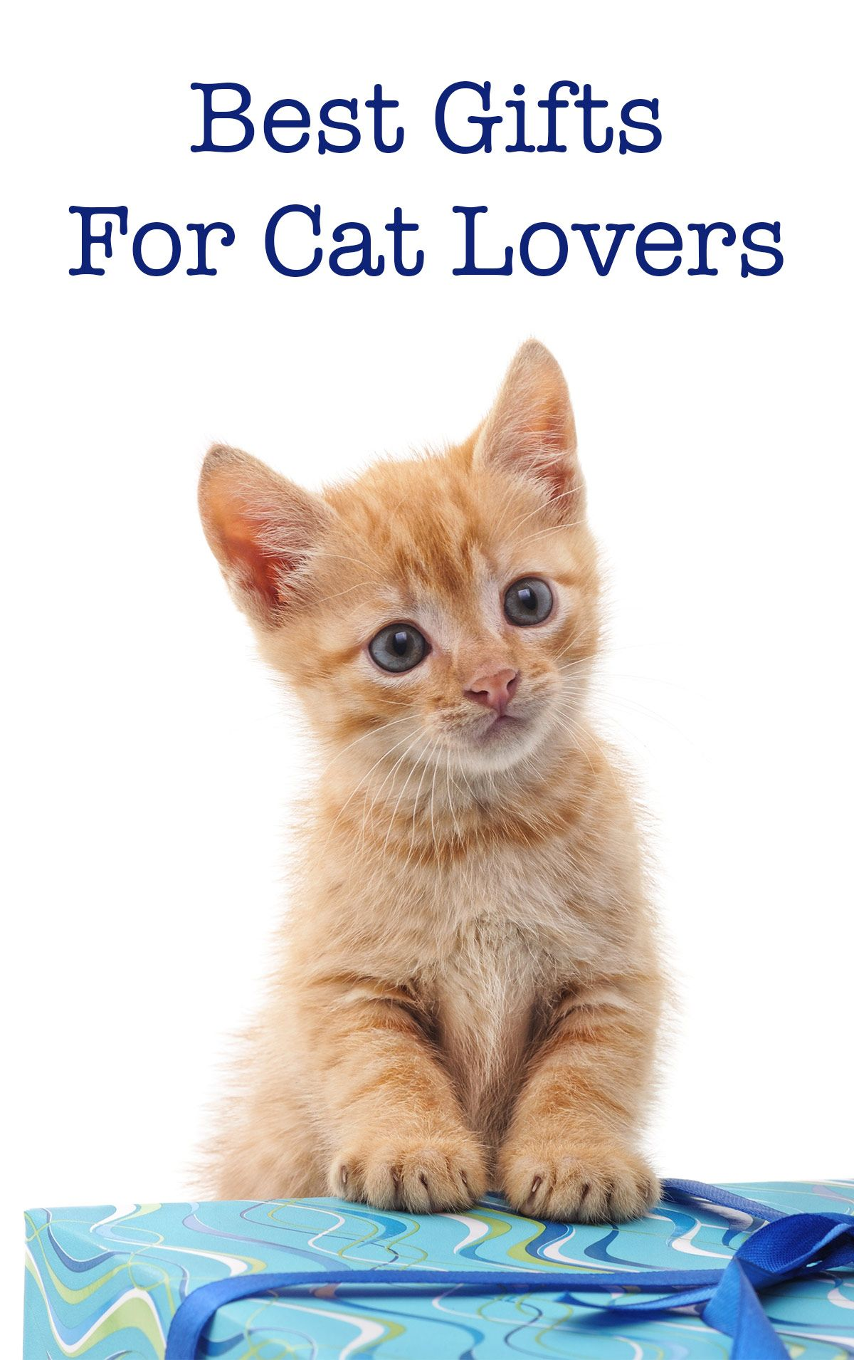 Reviews Archives Funny cat gifts, Cat site, Cats
