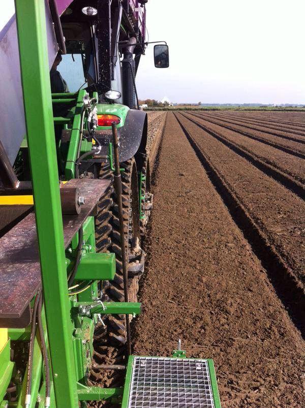 Tulpenbollen worden mbv. een machine in de grond gelegd.