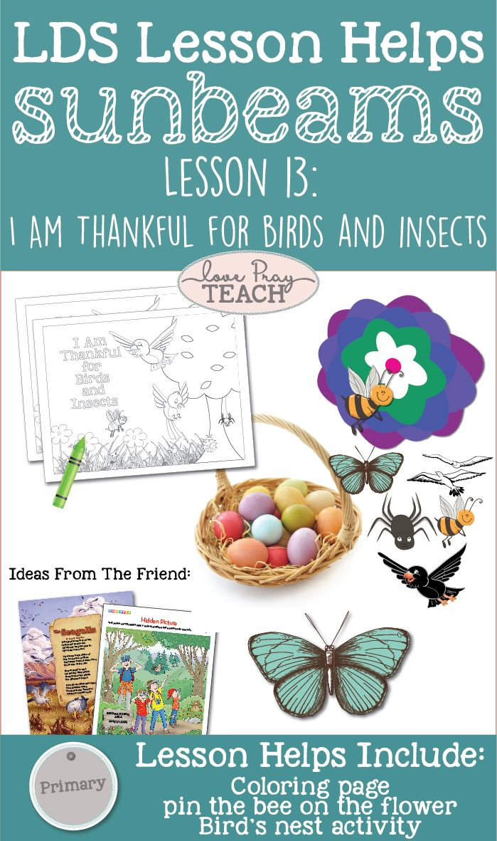 Sunbeams Chapter 13 Lesson Helps I Am Thankful For Birds And