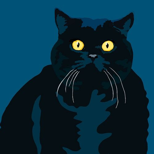 Fat Cat A cat portrait by Sebastiano Ranchetti