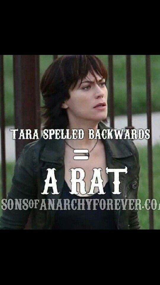 Tara Spelled Backwards A Rat Sons Of Anarchy Sons Of Anarchy