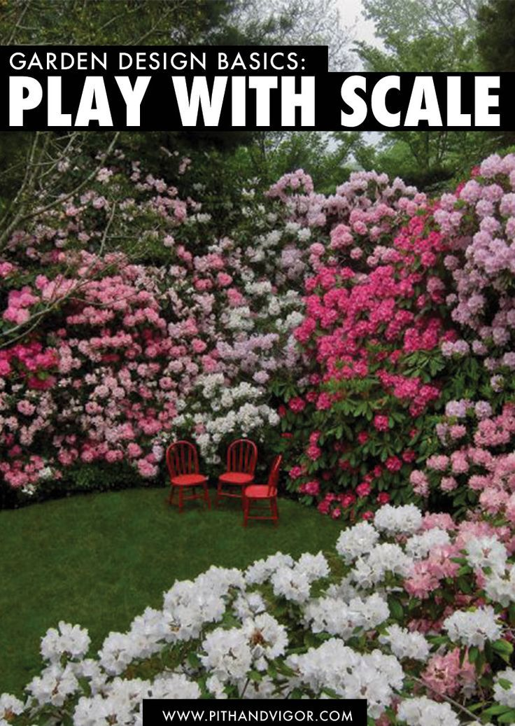garden design basics play with scale - Garden Design Basics