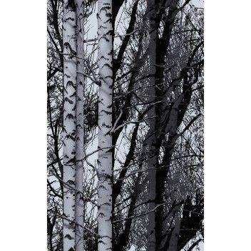 Staattinen Kalvo D C Fix Metsa 45 X 150 Cm Bauhaus Verkkokauppa Vitrage Folie