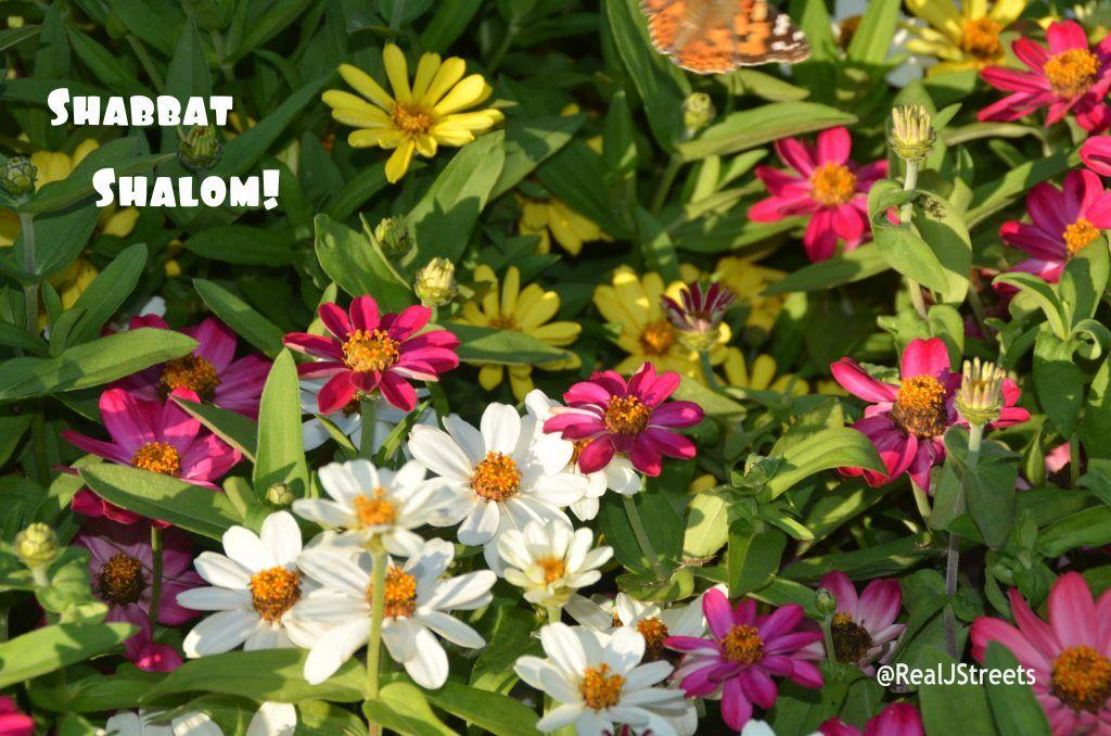 Park Art|My WordPress Blog_When Does Shabbat End On Saturday