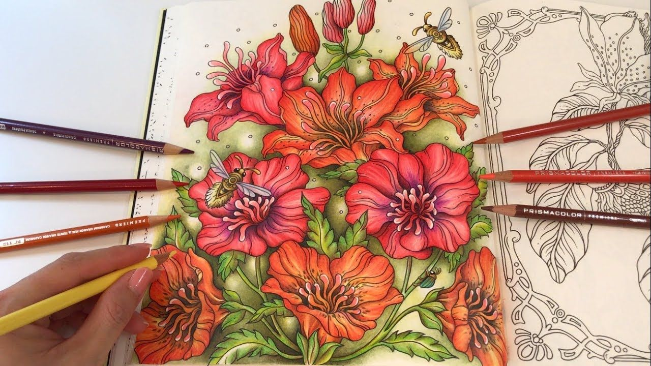 The Lilies | Tidevarv Coloring Book by Hanna Karlzon | Hanna ...