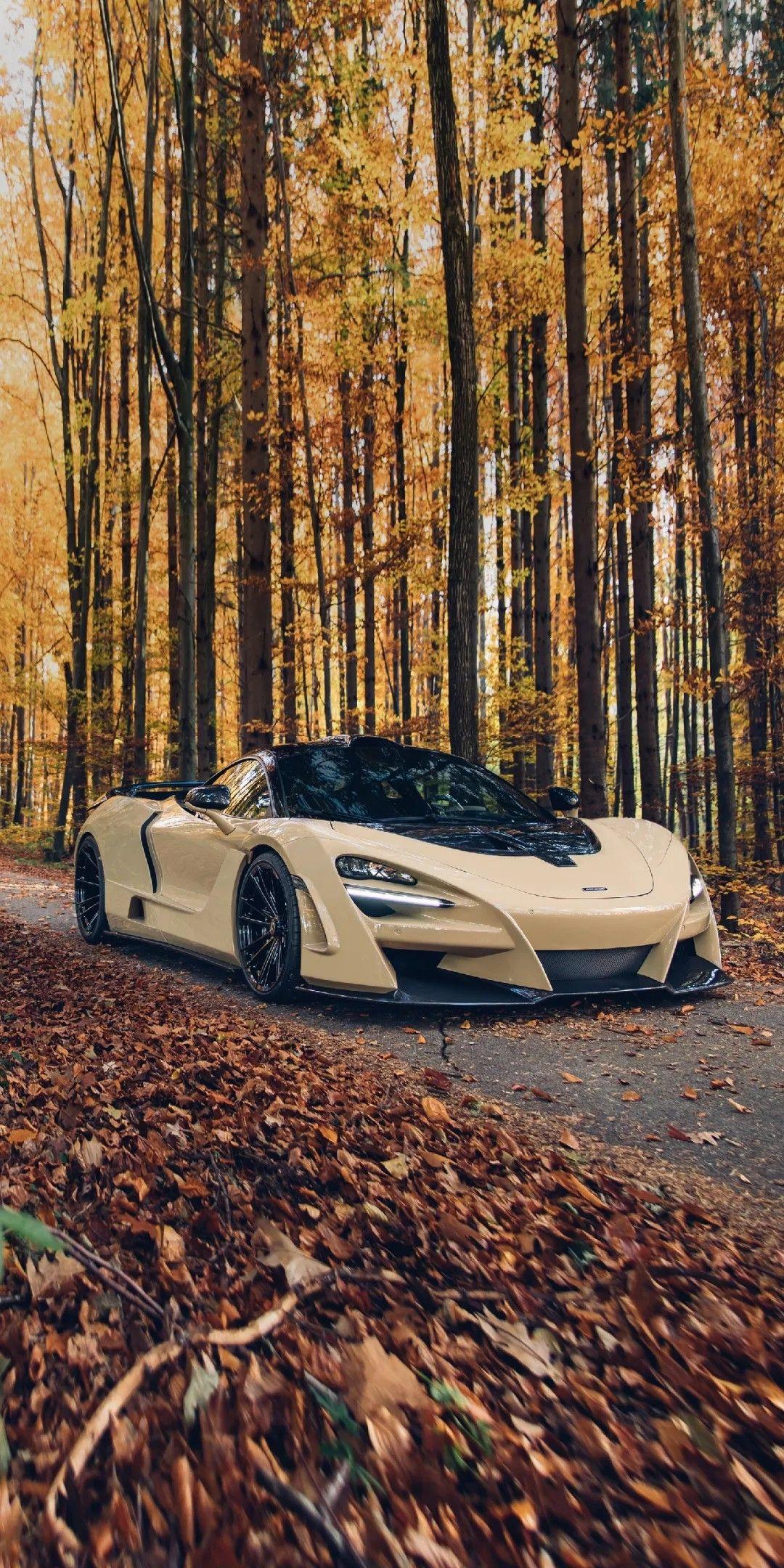 Mclaren Sportscar Cars Nature Mclaren Super Cars Supercars