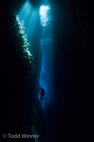 solomon islands underwater photography