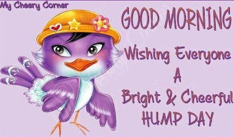Good Morning Wishing You A Bright And Cheery Wednesday