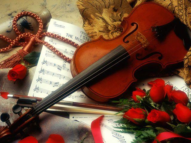 Violin Rose Wallpaper For Love Violins Roses Pinterest Music