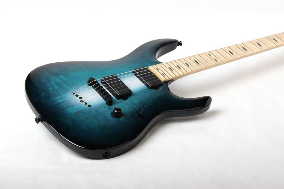 Legator Guitars Limited Edition Ninja 400 with Fishman pickups