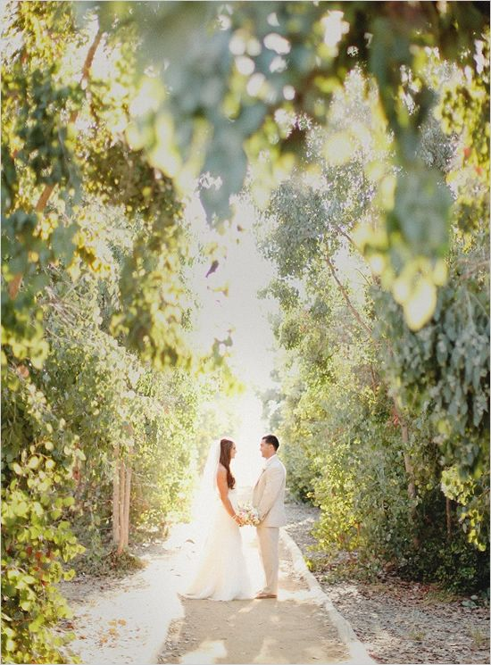 Beautiful shot in a winery- If you have an outside wedding, have your photographer take pictures in the sun!