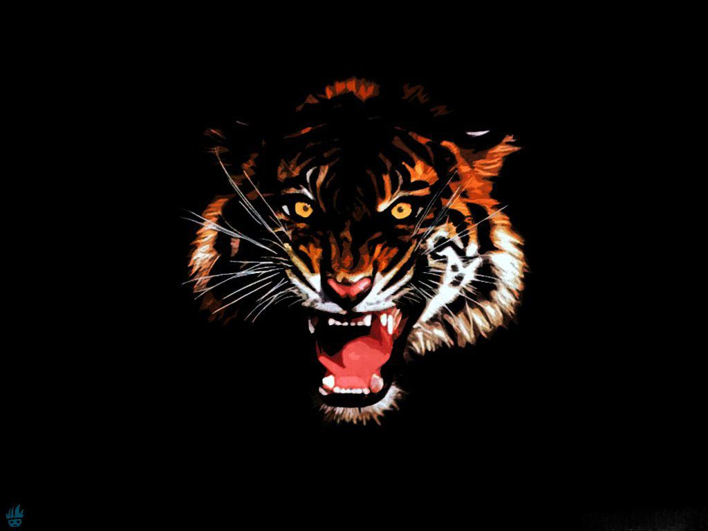Wallpapers Big Cats Tigers Painting Art Black Background Animals Image 62912 Download Animal Wallpaper Tiger Painting Wild Animal Wallpaper