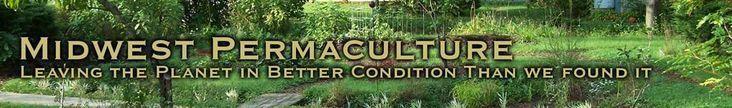 #FoodTipsInUrdu Refferal: 5031268429 #GardeningTipsTexas #vertikalergemüsegarten #FoodTipsInUrdu Refferal: 5031268429 #GardeningTipsTexas #vertikalergemüsegarten