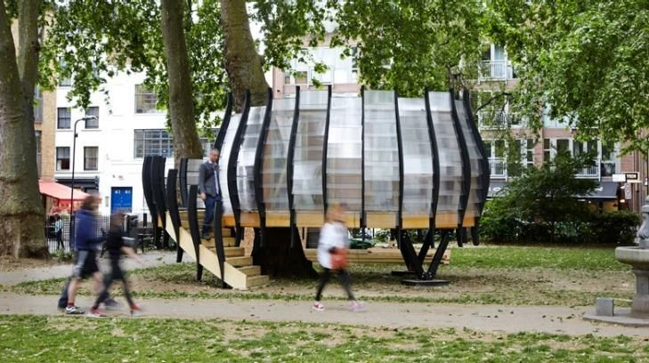 A pop-up office space has been built around a tree in east London's Hoxton Square.