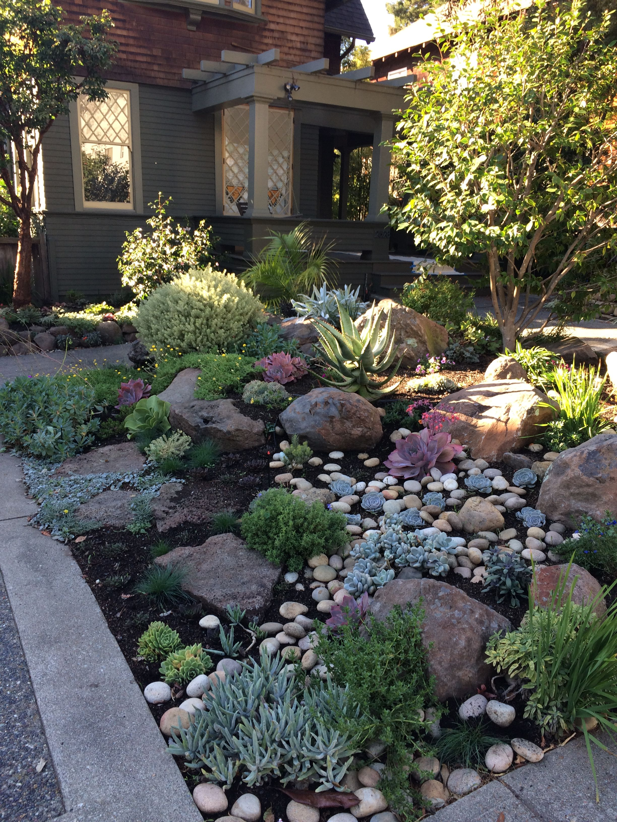 Like The Use Of Rocks And Succulents Front Yard Landscaping