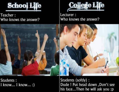 College Life College Life Desicomments Com High School Vs College College Life Life After College