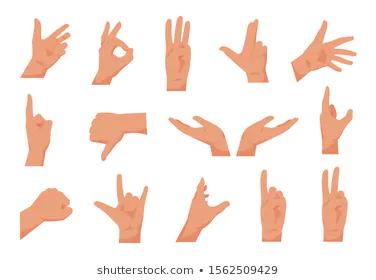 Hand Stock Vectors Images Vector Art Shutterstock Human Male Male Hands Stock Illustration