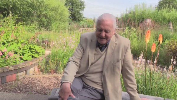 "BC on Twitter: ""We asked David Attenborough what his favourite butterfly is. What's yours? #butterflycount https://t.co/mtv6gZ0dPN https://t.co/LpkZ43ggrj"""