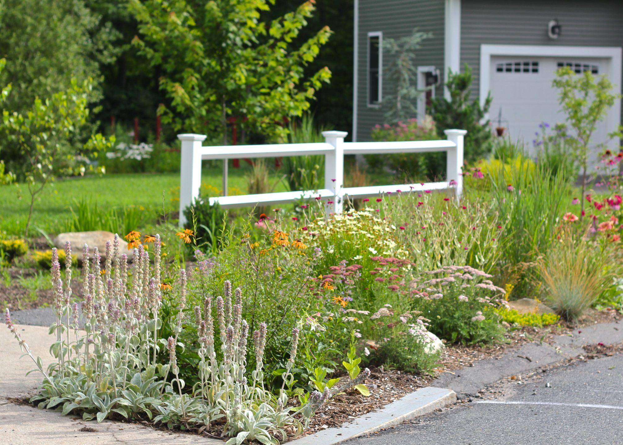 Creating A Hellstrip Garden Learn How To Create A Hellstrip