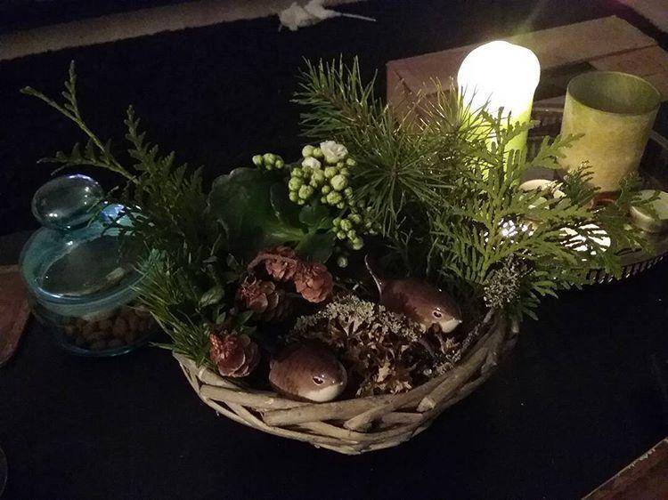 Anoppi oli tehny meille maailman kauneimman joulukukka-asetelman! ❤ Siellä on myös Lomonosovin ihanat linnut!  #joulukukat #ihanaanoppi