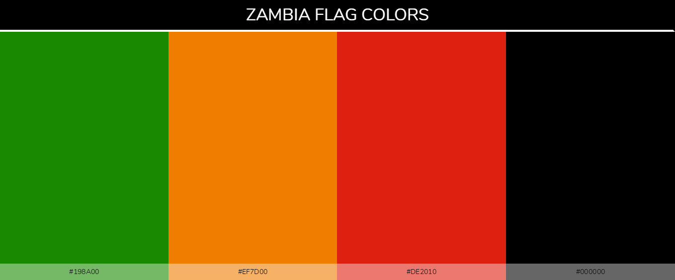 Color Palettes Of All Country Flags 137 In 2020 All Country Flags Flag Colors Palette