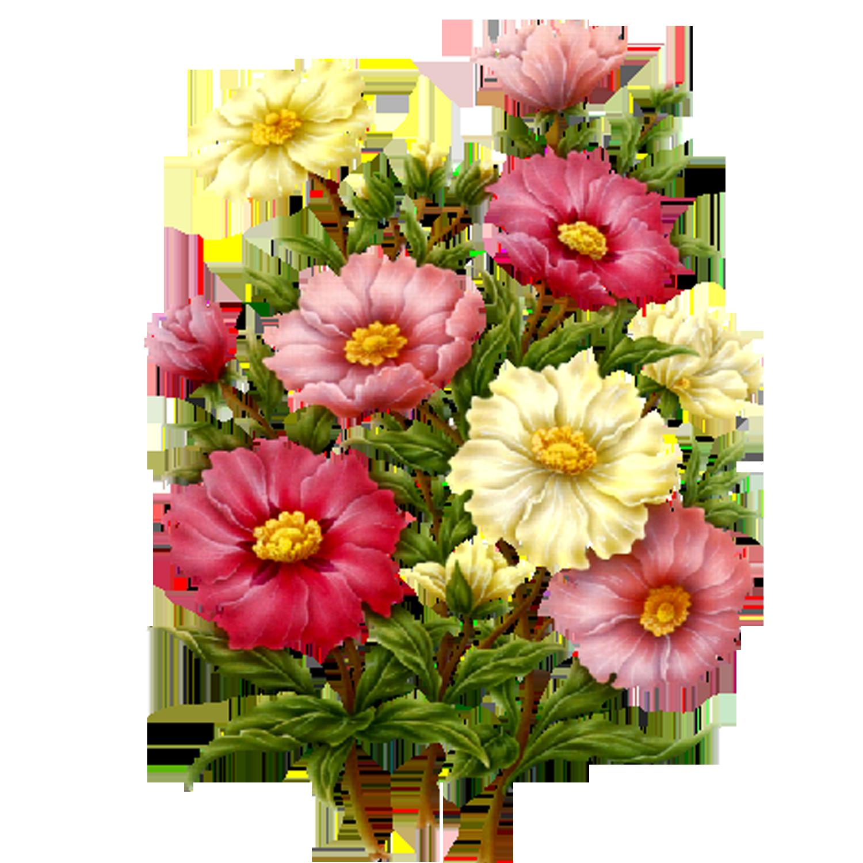 Flowers png beautiful flowersprints pinterest flowers flowers png dhlflorist Image collections