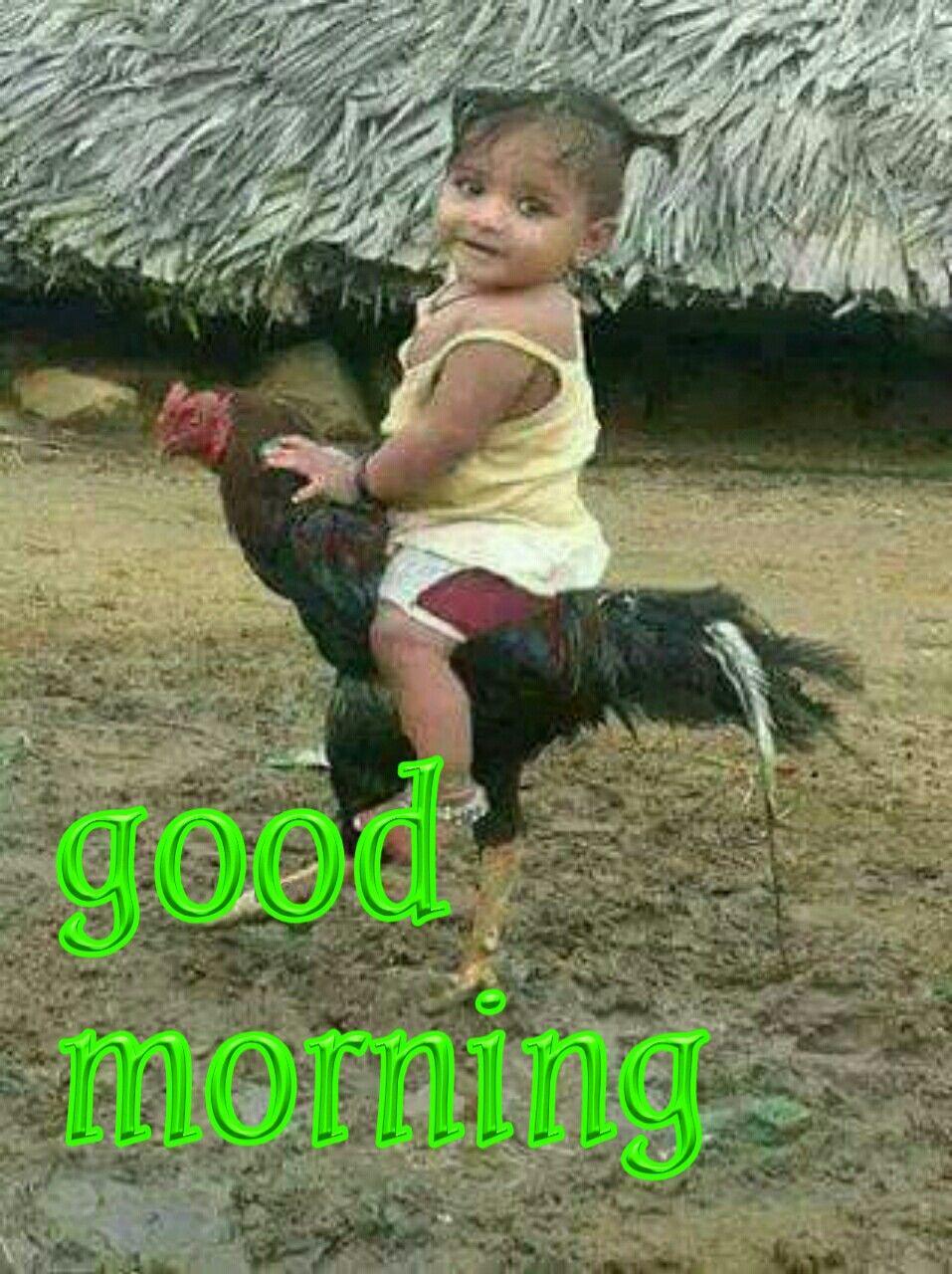 Good Morning No Mani Good Morning Funny Good Morning Quotes Good Morning