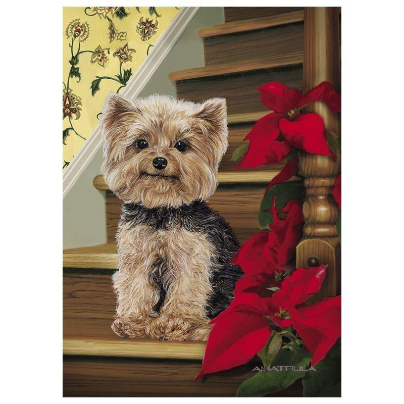 Yorkie Christmas Cards | YORKIES.LOVES OF MY LIFE | Pinterest ...