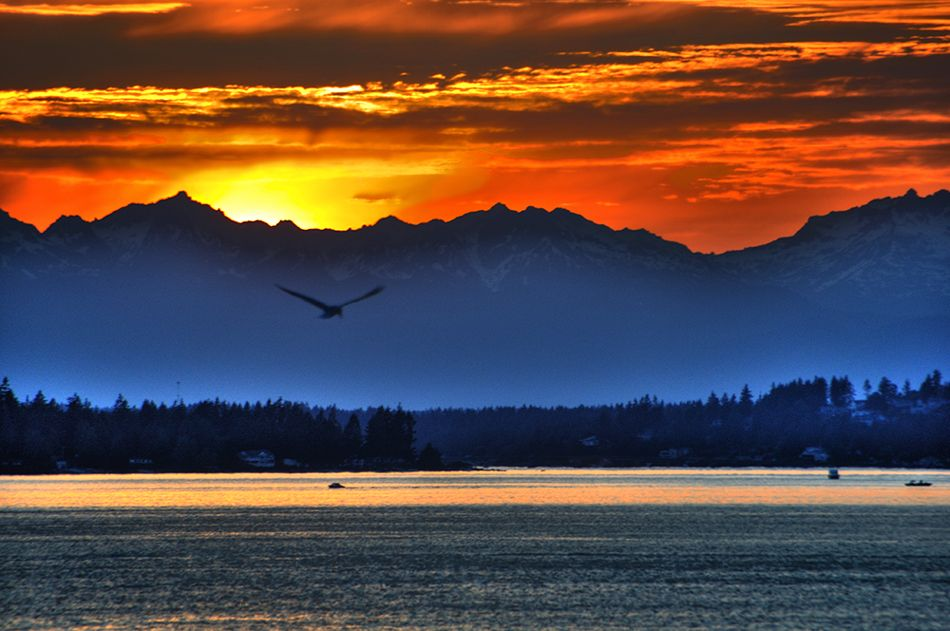 mountain Sunsets | Tacoma photo, sunset, olympic mountains ...