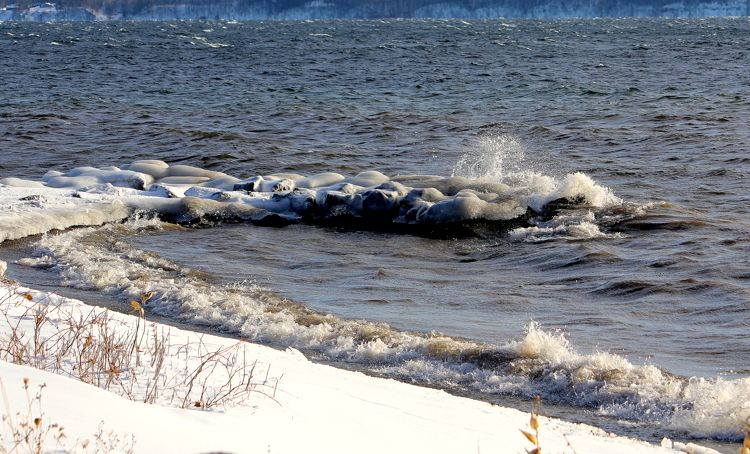 Seneca lake frozen shoreline buggies and vines
