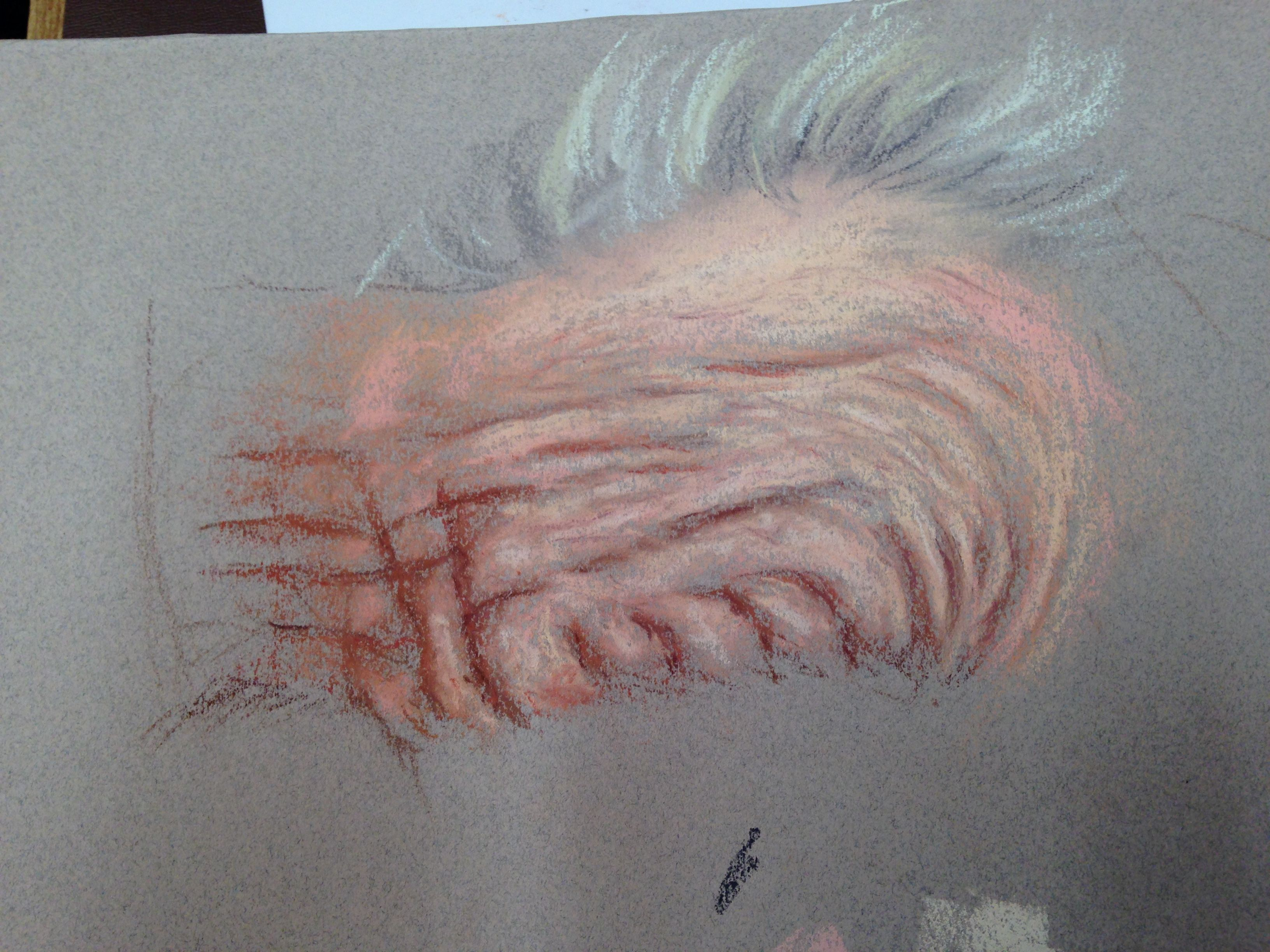 Learn To Paint Wrinkles In Pastel As Part Of Cath Ingles