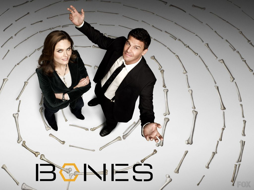 Booth And Bones Wallpaper Booth And Brennan Wallpapers Bones Tv Series Bones Tv Show Tv Shows