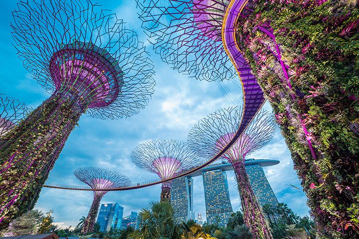 Singapore The City Of The Future That You Can Visit Right Now Singapore Garden Singapore City Singapore Travel