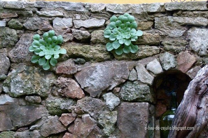 "jardim da ""Casa Catita"", Algarve"