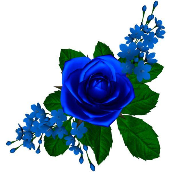 Yandeks Fotki Liked On Polyvore Featuring Flowers Flower Painting Flower Wallpaper Rose Flower Png